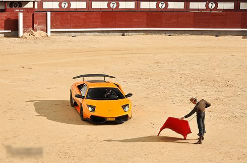 Siêu xe Lamborghini làm bò tót
