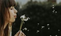 10 mẹo nhỏ để có cuộc sống đơn giản