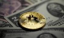 Hơn 8.000 USD một Bitcoin