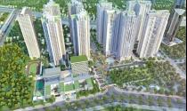 Dự án TNR Sky Park