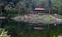 Bà Rịa – Vũng Tàu: 2/3 dự án du lịch sinh thái trong rừng bị chậm tiến độ và thu hồi