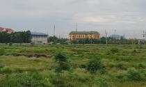 """Bỏ hoang hàng chục hécta """"đất vàng"""" ở TP.Ninh Bình"""