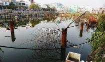 Đà Nẵng đề xuất thu hồi dự án Vũ Châu Long làm bãi đỗ xe 4 tầng ngầm, công viên