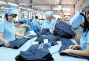 Số lượng doanh nghiệp giải thế tăng bất thường