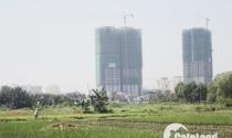 Chuyển đổi 26.000ha đất nông nghiệp, bất động sản được gì?