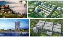 Dự án trong tuần: Khởi công Hoàng Hải Complex và Ecotown Phú Mỹ - Ra mắt biệt thự Sapa Jade Hill