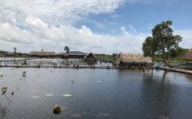Ao sen sinh thái trên đảo ngọc Phú Quốc bị phân lô bán nền