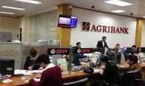 Agribank năm 2018 báo lãi 7.525 tỷ đồng