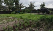 Bí thư Hà Nội yêu cầu giải quyết triệt để các vụ khiếu kiện đất đai trong năm 2019