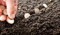Nợ tiền sử dụng đất quá hạn, phải trả theo giá thời điểm nào?