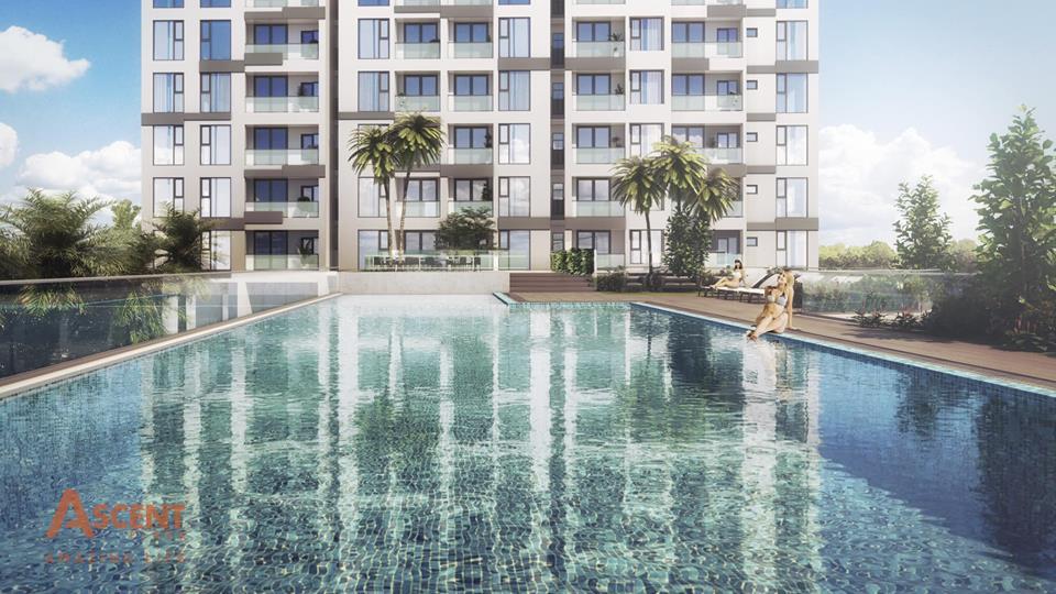 Phối cảnh khu hồ bơi tại dự án Ascent Plaza Bình Thạnh