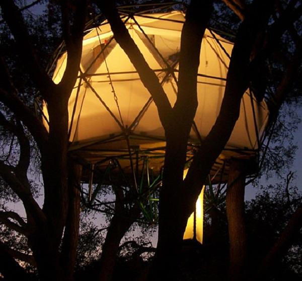 Nhà cây Feider's Interior Canopy có thiết kế giống như chiếc lồng đèn giấy của Nhật. Ngôi nhà dùng chất liệu có thể chịu lực và treo lên cây bằng dây thép. Giá trị của ngôi nhà này là 18.800 USD.