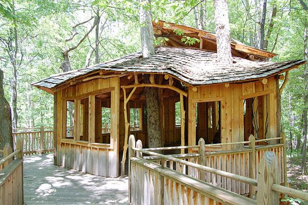 Những ngôi nhà cây như thế này được thiết kế đặc biệt dành cho trẻ em khuyết tật hoặc những em không có thể trạng mạnh khỏe như người khác. Thậm chí ngay cả những người đi xe lăn cũng có thể lên chơi ở ngôi nhà này. Bởi thế nó mới có tên là everybody's treehouse, trị giá 450.000 USD.