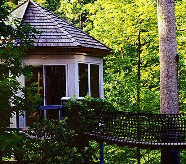 Nhà cây này được nối liền với một cây cầu cáp treo được trang bị đầy đủ tiện nghi mà con người cần như điện, internet, hệ thống âm thanh... Ngôi nhà này có giá 250.000 USD.