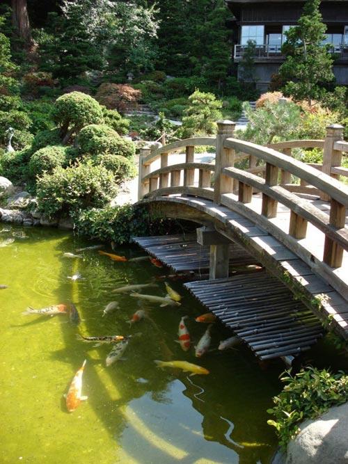 Đẹp lạ lùng vườn Nhật đúng chất - 13