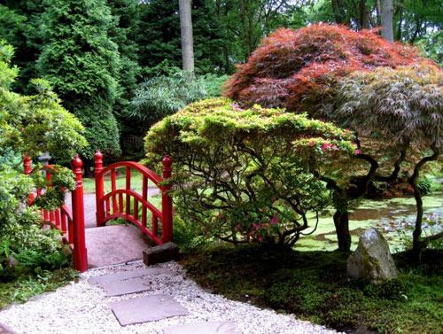 Đẹp lạ lùng vườn Nhật đúng chất - 15