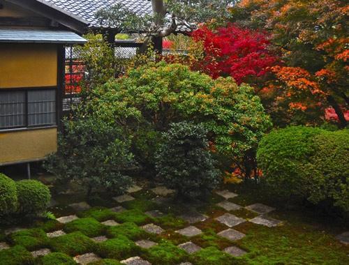 Đẹp lạ lùng vườn Nhật đúng chất - 6