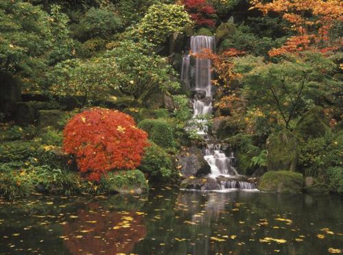 Đẹp lạ lùng vườn Nhật đúng chất - 9