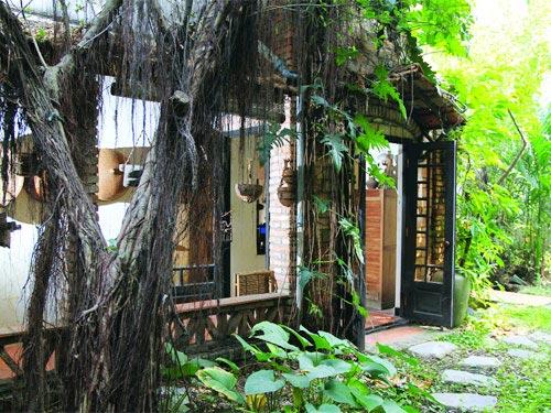 Tới thăm nhà  Dương Thụ, Phú Quang - 9