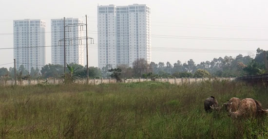 Dự án Khu nhà ở sinh thái tại phường Xuân Phương vẫn chưa hoàn thành GPMB.    Ảnh: Nguyên Hà