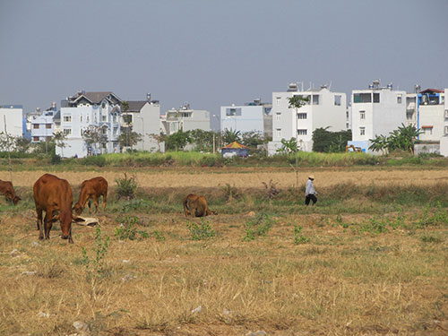 Hệ số k giảm có thể giảm bớt áp lực nghĩa vụ tài chính đất cho người dân