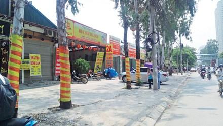 Những công trình xây dựng trái phép trên đất dự án dọc đường 70, xã Tân Triều, Thanh Trì.