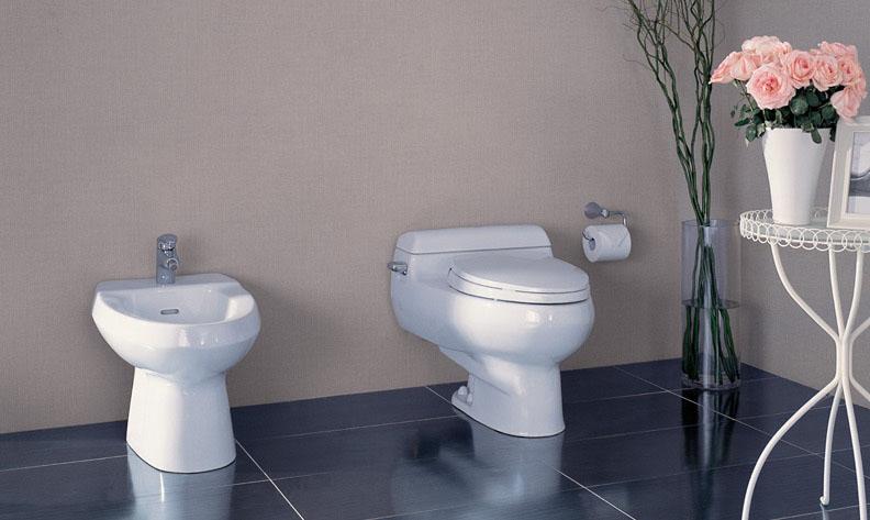Giá và cách chọn các thiết bị vệ sinh trong nhà