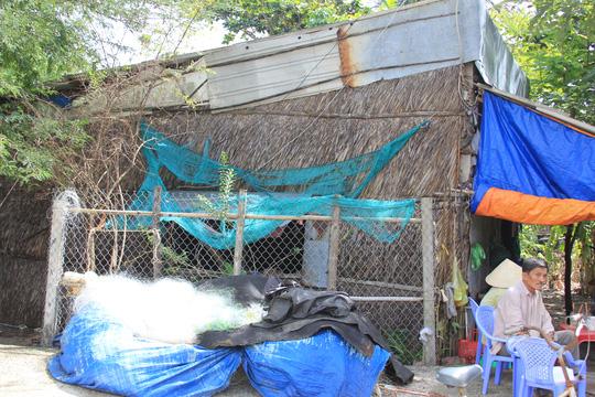 Dân xã Long Hòa, huyện Cần Giờ với 12 năm chờ bồi thường