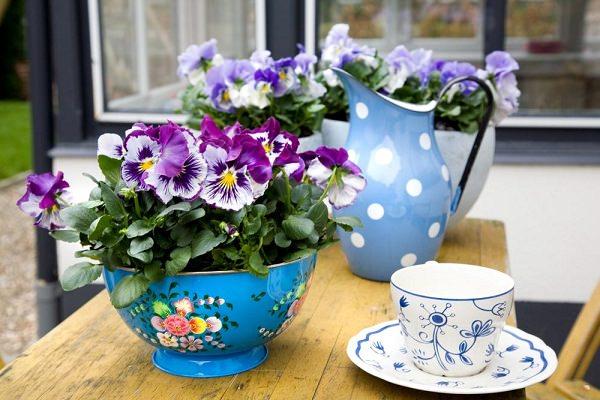 Ngoại thất xinh lung linh với chậu hoa màu sắc