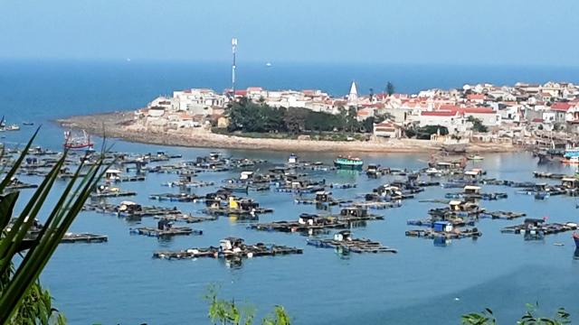 Thanh Hoá duyệt quy hoạch chung đô thị Tĩnh Gia đến năm 2035