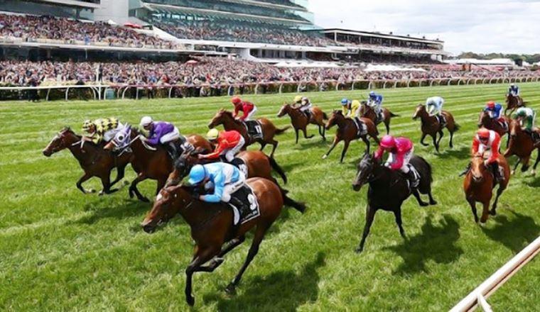 Đà Nẵng sắp có hoạt động cá cược đua ngựa và sân golf tỷ USD truongduangua 1574679158