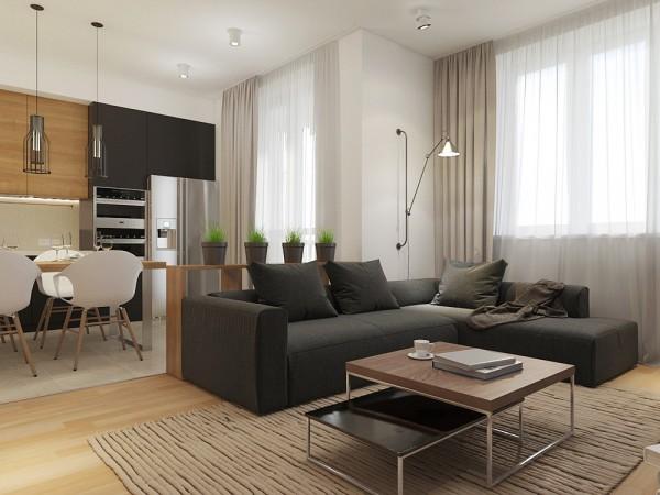 Nên hay không nên chon căn hộ studio?