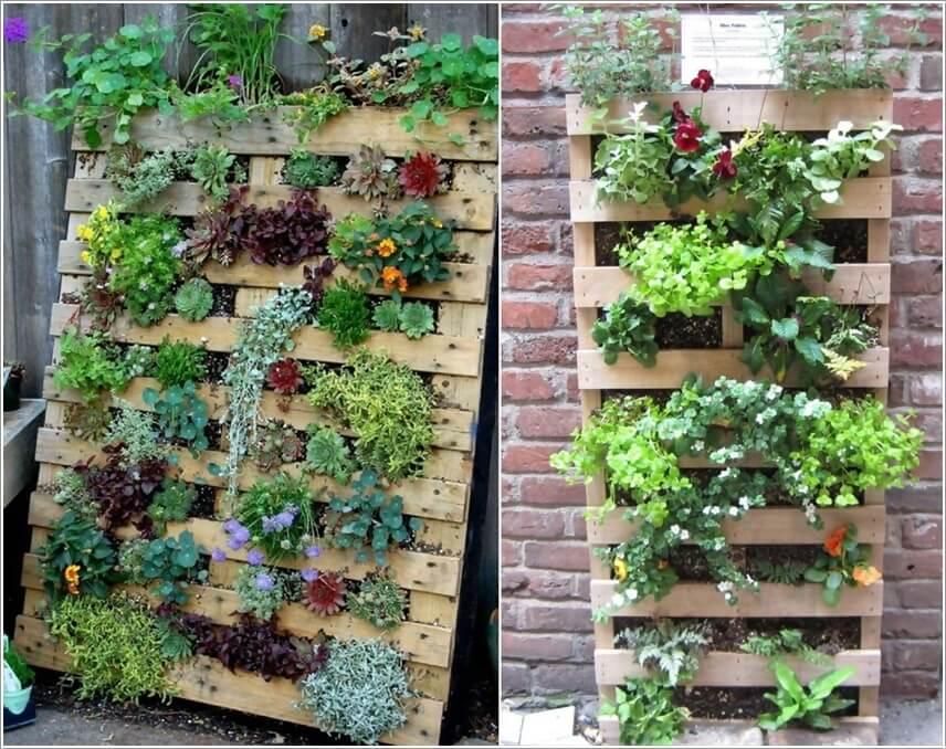 Tái sử dụng thanh pallet để trồng thành một khu vườn đứng.