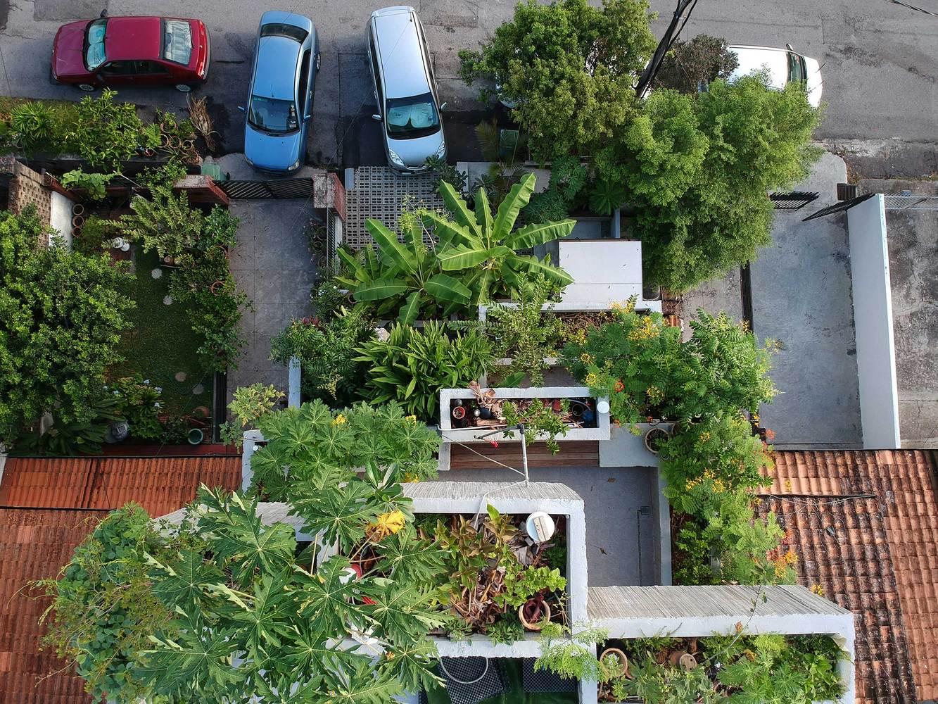 Ngôi nhà phủ cây xanh mướt độc đáo ở Malaysia