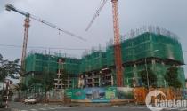 Có 1 tỷ đồng chọn mua dự án nào ở khu Đông?