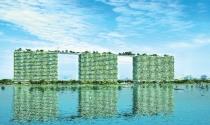 Bất động sản xanh – sự lựa chọn thông minh của người tiêu dùng