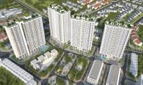 Công ty thành viên của Geleximco huy động 800 tỷ từ trái phiếu, nộp tiền sử dụng đất cho 2 lô đất tại Tuy Hòa, Phú Yên