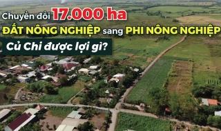 Chuyển đổi 17.000 ha đất nông nghiệp sang phi nông nghiệp, Củ Chi được lợi gì?