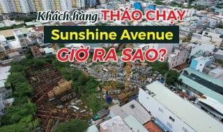 Từng bị khách hàng thanh lý hợp đồng vì chậm tiến độ, dự án Sunshine Avenue giờ ra sao?