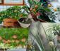 Ý tưởng trồng vườn cây ăn quả trên sân thượng