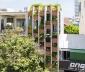 Nhà ống lệch tầng như resort ở Đà Nẵng lên báo Mỹ
