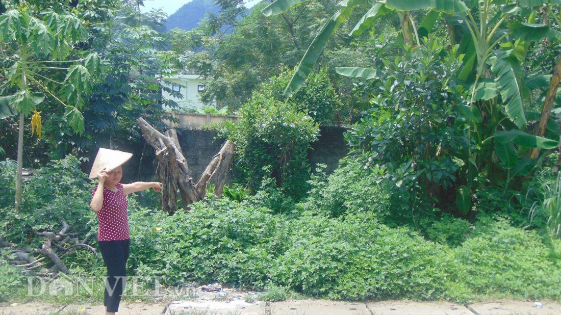 Thái Nguyên: Dân khóc dở, mếu dở vì mua đất đấu giá của huyện Phú Lương