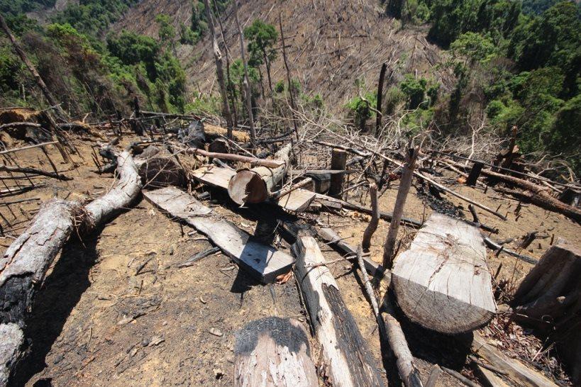 Chuyện lạ ở Quảng Ngãi: Hơn 1.410 ha đất rừng tự nhiên bị giảm là do thống kê nhầm!