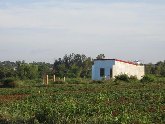 Đất nông nghiệp chưa có sổ có được chuyển nhượng, cho tặng?
