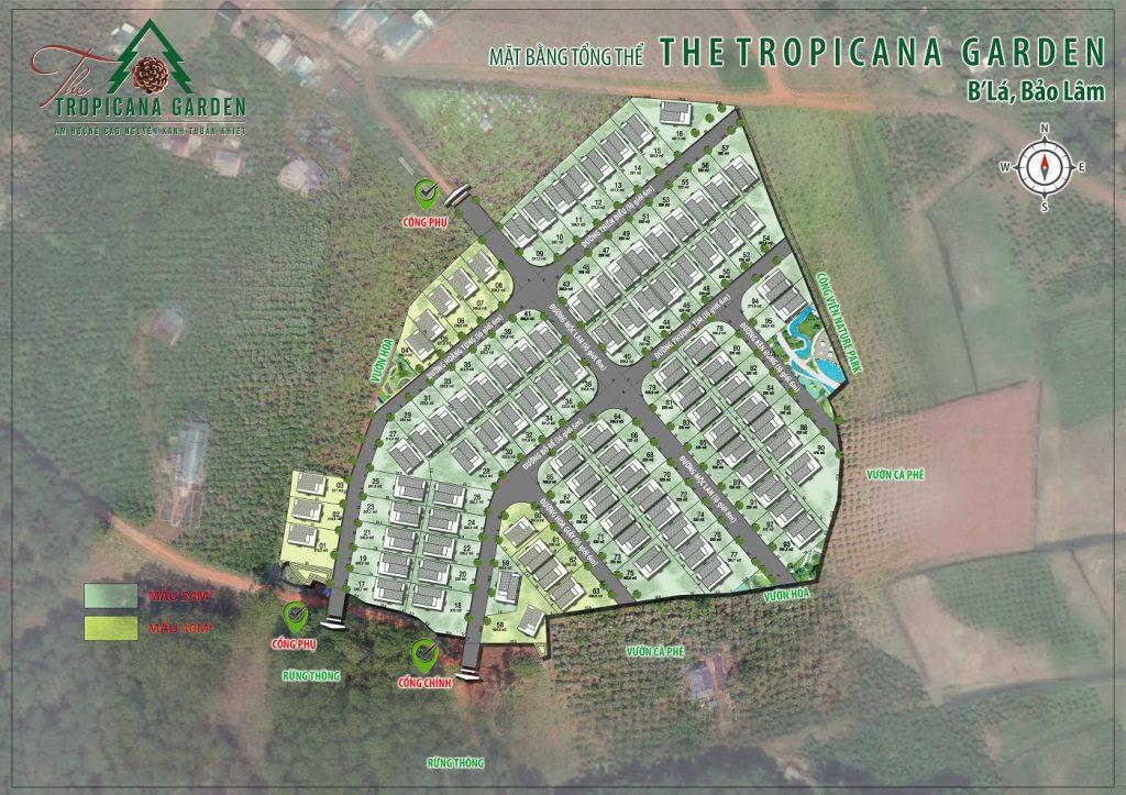 Khu nghỉ dưỡng sinh thái The Tropicana Garden Lâm Đồng 2