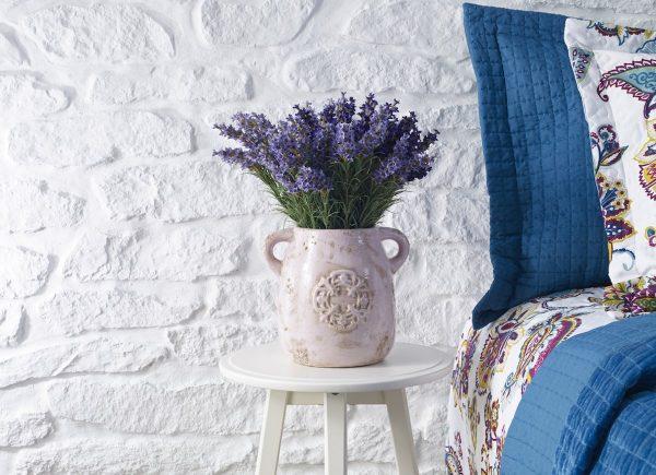 Cây trồng trong phòng ngủ - Cây hoa oải hương