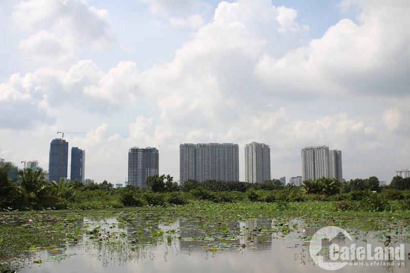 TP.HCM có nên xóa sổ đất nông nghiệp?