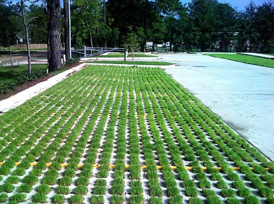 Gạch trồng cỏ: Ưu điểm và bảng giá hiện nay