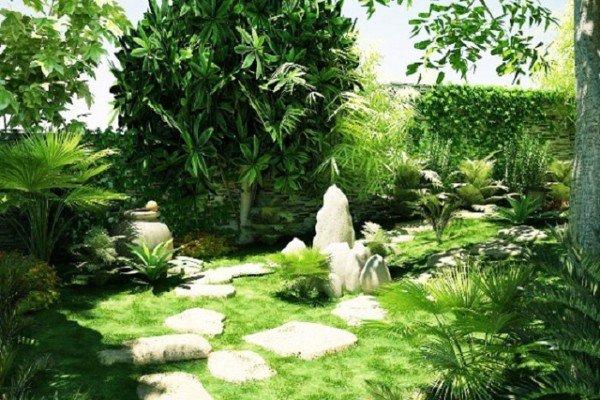 6 loại cỏ trồng sân vườn thông dụng hiện nay