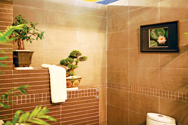 phongvesinhbaitrihopphongthuyvanhungdieukiengky 1353079385 Thiết kế phong thủy phòng tắm ở trung tâm tòa nhà
